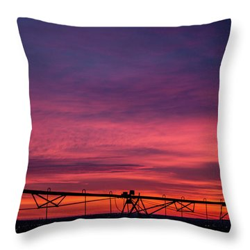 Throw Pillow featuring the photograph On The Farm by Tyson Kinnison