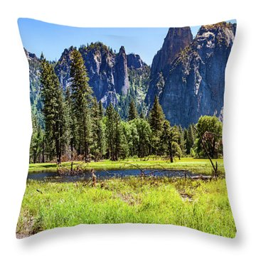 On The Floor Of Yosemite Throw Pillow