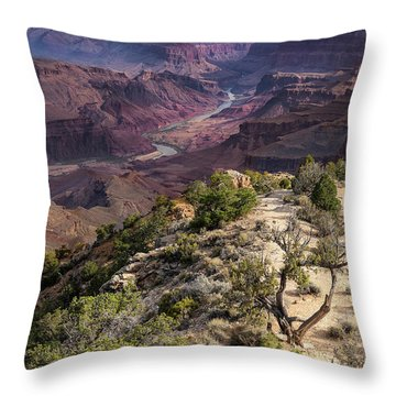 Looking Out The Front Door Throw Pillow