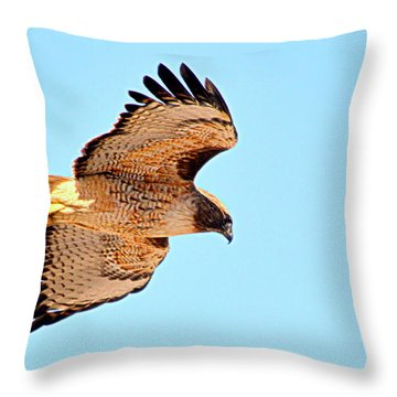 Throw Pillow featuring the photograph On The Hunt by AJ Schibig