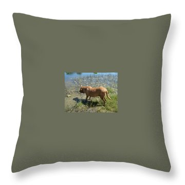 On The Hunt Throw Pillow by Val Oconnor
