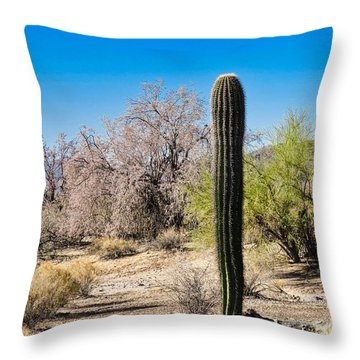 On The Ironwood Trail Throw Pillow