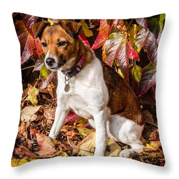 On The Leaves Throw Pillow