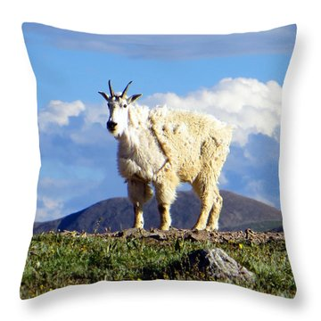 On The Mountain Top Throw Pillow