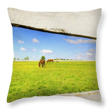 On The Other Side Throw Pillow by Darren Fisher