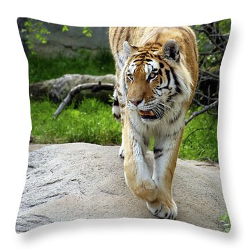 On The Prowl Throw Pillow by Gordon Dean II