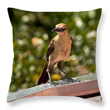 On The Rail Throw Pillow by Christopher Holmes
