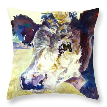 On The Range Throw Pillow