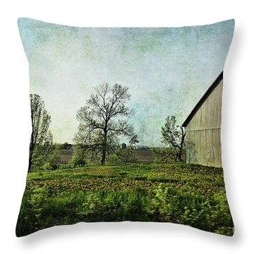 On The Road Again - Ml03 Throw Pillow by Aimelle