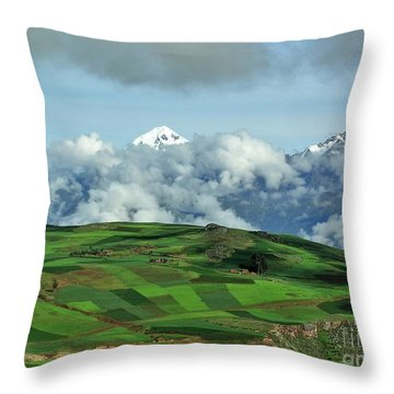 On The Road From Cusco To Urubamba Throw Pillow by Michele Penner