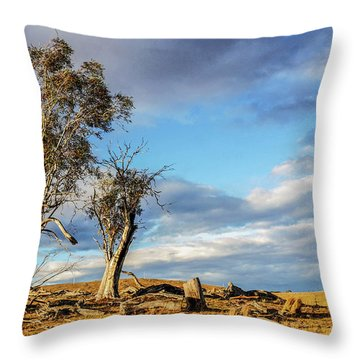 On The Road To Cooma Throw Pillow