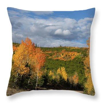 On The Road To Spirit Lake Throw Pillow