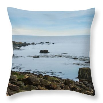 Throw Pillow featuring the photograph On The Rocks by Robin-lee Vieira