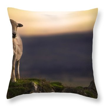 On The Top Of The Hill Throw Pillow