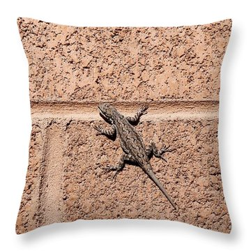 Throw Pillow featuring the photograph On The Wall by Christy Pooschke