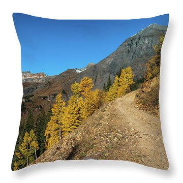 On The Way To Clear Lake In Co - 0056 Throw Pillow