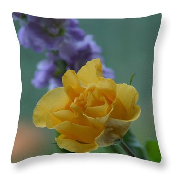 On The Window Sill. Throw Pillow