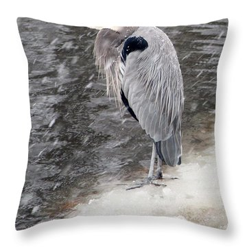 On Thin Ice Throw Pillow