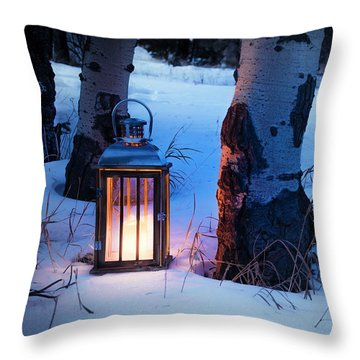 On This Winter's Night... Throw Pillow by The Forests Edge Photography - Diane Sandoval