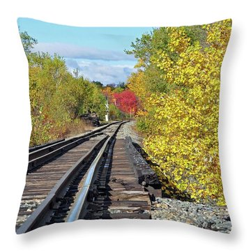Throw Pillow featuring the photograph On To Fall by Glenn Gordon