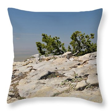 On Top Of Sandia Mountain Throw Pillow