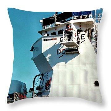 On Watch Throw Pillow by Thomas R Fletcher