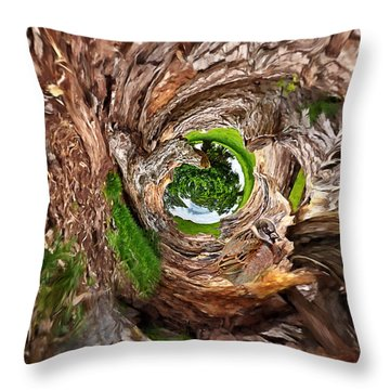 Throw Pillow featuring the photograph Once A Tree by Pennie  McCracken