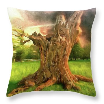 Once I Touched The Stars Throw Pillow