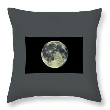 Throw Pillow featuring the photograph Once In A Blue Moon by Candice Trimble