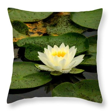 Once Upon A Lily Pad Throw Pillow