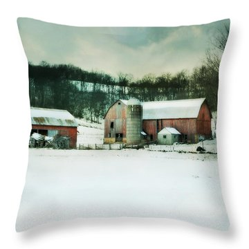 Throw Pillow featuring the photograph Once Was Special by Julie Hamilton