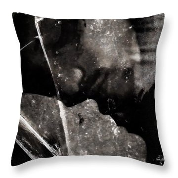 Once We Had A Dream Throw Pillow