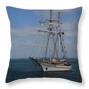 Throw Pillow featuring the photograph Approaching Kingscote Jetty by Stephen Mitchell