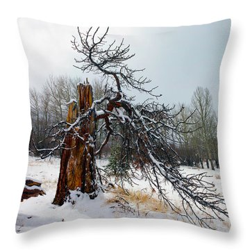 Throw Pillow featuring the photograph One Branch Left by Shane Bechler