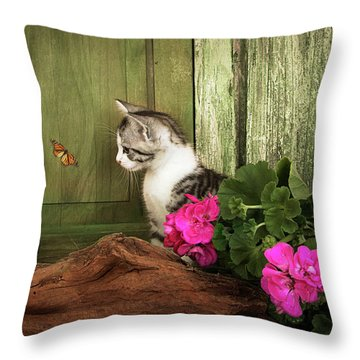 One Cute Kitten Waiting At The Door Throw Pillow