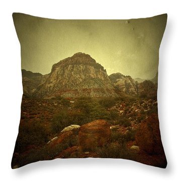 Throw Pillow featuring the photograph One Day by Mark Ross