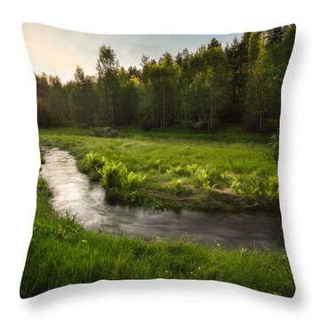 One Day Of Summer Throw Pillow