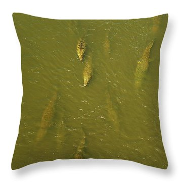 One Direction IIi Throw Pillow