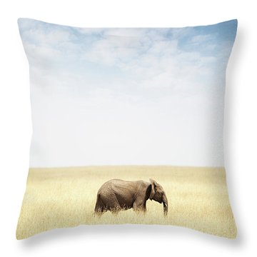 One Elephant Walking In Grass In Africa Throw Pillow