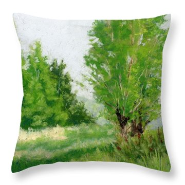 One Fine Spring Day Study Throw Pillow
