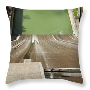 Throw Pillow featuring the photograph One Heckuva Waterslide by Carol Lynn Coronios