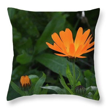 One In Bloom Throw Pillow