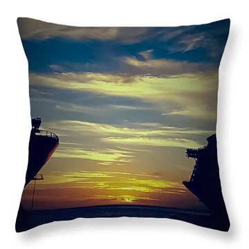 One Last Glimpse Throw Pillow