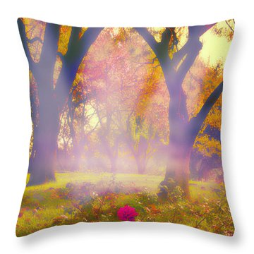 One Last One - 2 Throw Pillow by Kat Besthorn