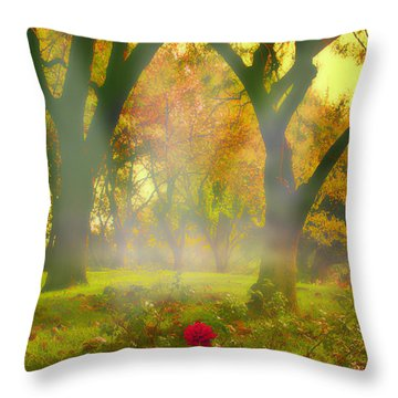 One Last One Throw Pillow by Kat Besthorn
