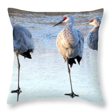 One Leg At A Time Throw Pillow