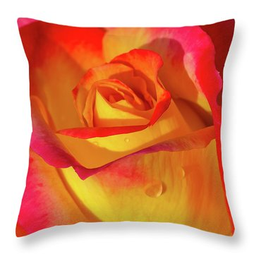 Throw Pillow featuring the photograph One Macro Rose by Julie Palencia