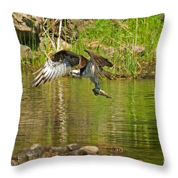Throw Pillow featuring the photograph One More Fish by Alana Ranney