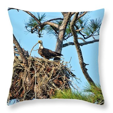 Throw Pillow featuring the photograph One More Twig by Deborah Benoit