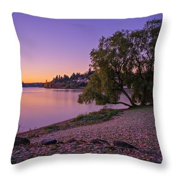 One Morning At The Lake Throw Pillow